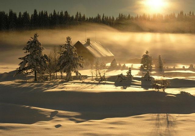 Šumava during the winter