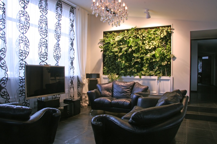 A living wall for a living room