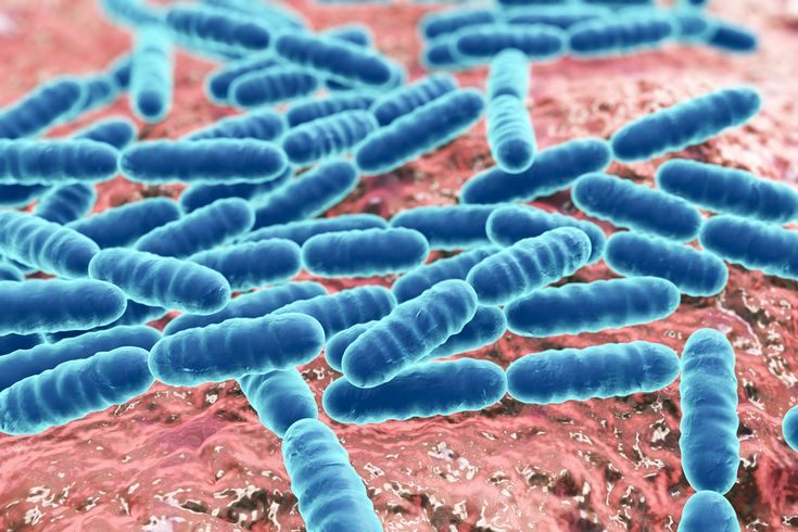 Dr. Alan Christianson – Saccharomyces Boulardii Heals Leaky Gut among other GI issues