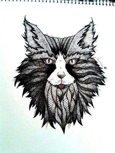 #cat#art#draw