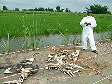 If you don't know what a body farm is.....you should learn