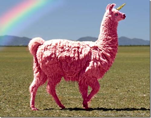 WHAT WHAT WHAT???  LOL: Pink Llamas, Pink Unicorns, Cotton Candy, Unicorns Llamas, Rainbows, My Life, Funny, I Hate People, Animal