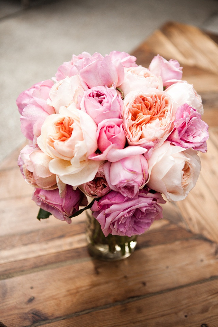 Can't get enough of these colors ~ Centerpiece by hollyflora.com,  Photography by laurenrossphoto.com