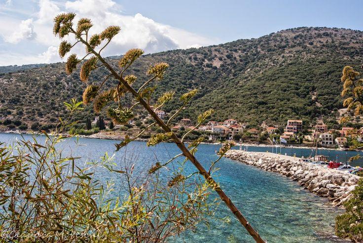 Agia Efimia, #Cefalonia http://www.travelstories.it/2014/09/cose-da-sapere-su-cefalonia-unisola-non.html #cefalonia #kefalonia #grecia #traveltips #maregrecia