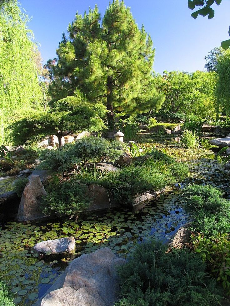 Himeji Garden, Adelaide, Australia   Bill Doyle, Panoramio South Parklands, Adelaide is surrounded by parks on all sides