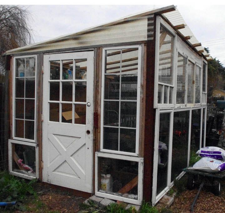 Greenhouse from discarded windows things to grow for Garden design windows 7