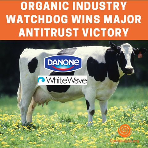 VICTORY! France's Groupe Danone Sheds Stonyfield in WhiteWave Acquisition. Merger would have combined Stonyfield, Horizon, and Wallaby to Dominate Organic Dairy. In August 2016 The Cornucopia Institute, formally challenged the acquisition based on forecasting the serious erosion of competition it would have created in the consumer marketplace and the negative economic impact it would have on U.S. organic dairy farmers.