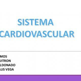 ALEJANDRA RAMOS ROSA ALICIA HUITRON FERNANDA MALDONADO MAYELA ESTIVALIS VEGA   • El corazón y el sistema primitivo aparece hacia la mita de la 3er semana.. http://slidehot.com/resources/sistema-cardiovascular-embriologia.49488/
