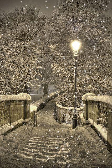 WINTER SNOW GIF