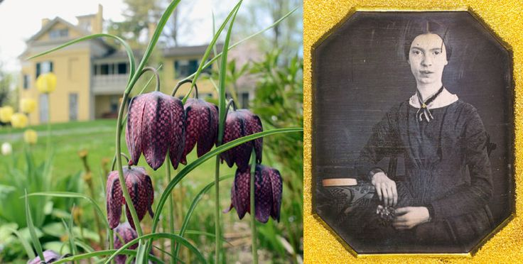 Archaeologists are excavating the grounds of the home where the poet lived in hopes of restoring her botanical treasures.