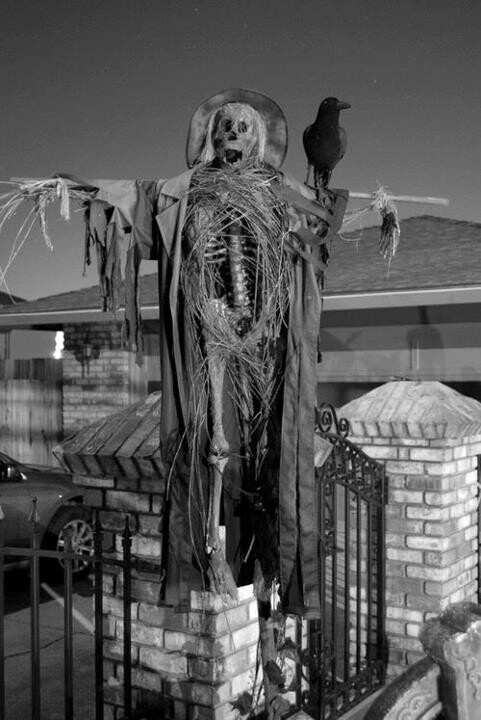 king mansion full metal skeleton bbtuew