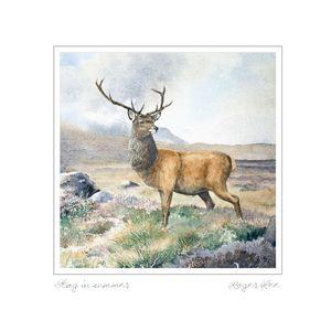 Red Deer Stag greetings card by wildlife artist Roger Lee