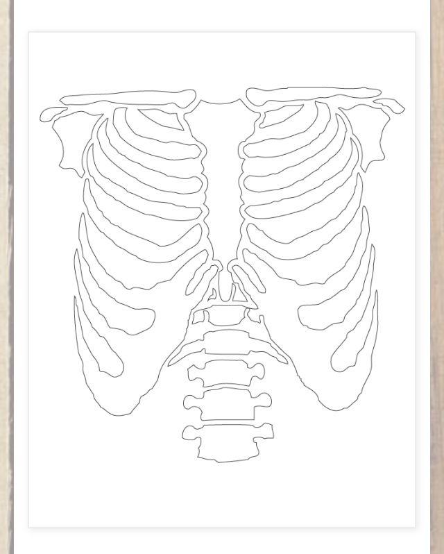 DIY skeleton stencil!   More inexpensive crafts and DIY's for you frugalistas to make from our blog! http://revampthevintage.blogspot.com/2012/10/diy-halloween-skeleton-costume.html?m=1