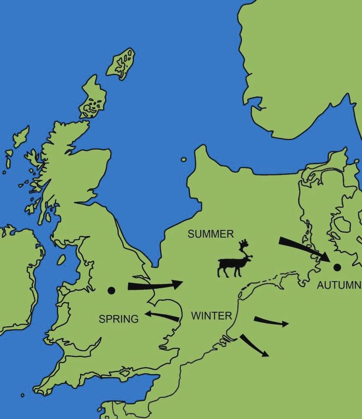 The extent of Doggerland during the Younger Dryas, around 12,000 years ago