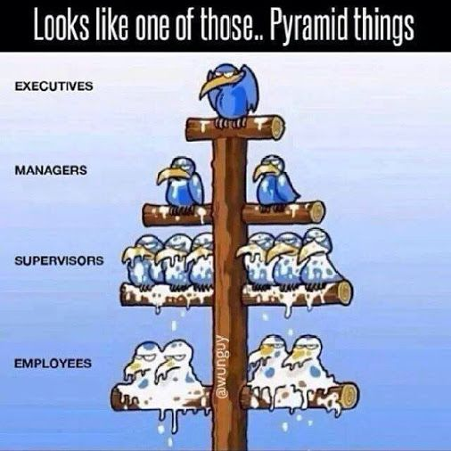 The Real Pyramid Scheme is Your Job - are there problems with in the MLM industry? Yes. But we have solutions - #thisIsAPyramidScheme