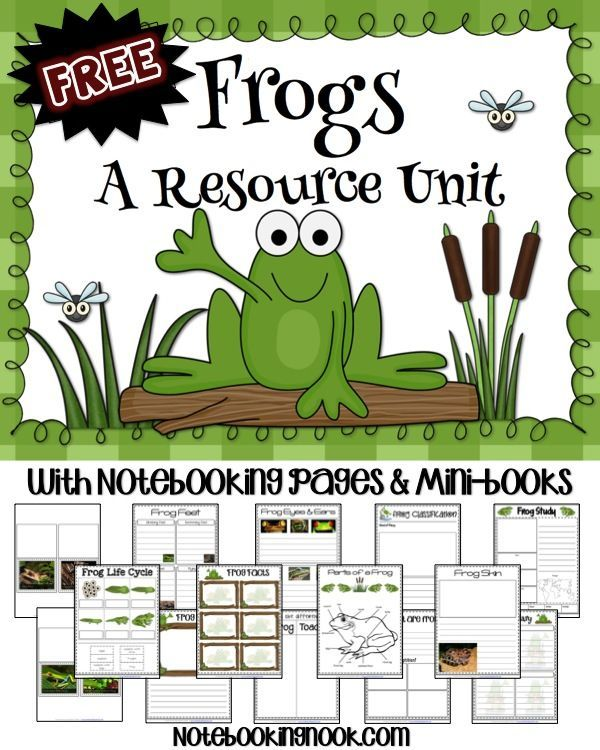 FREE Frogs Unit Study {with printable pages}