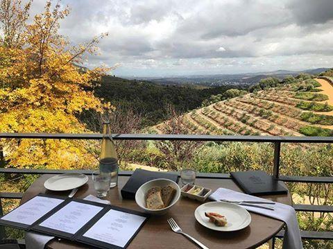 #Lunch with a #view.   #Sunset over our beautiful vineyard. #TOKARA  #TOKARAWine #Wine #Stellenbosch #SouthAfrica #OliveOil #Brandy #TOKARARestaurant #Restaurant #Food #Dinner #Lunch #Cuisine