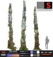 scanned 16k 3D model