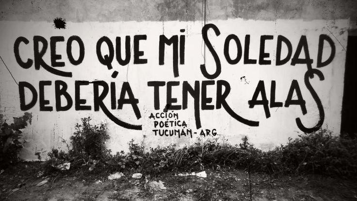 #soledad #alas