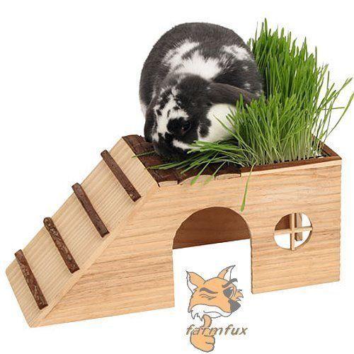 ber ideen zu kaninchenhaus auf pinterest hamsterhaus hase und eingang. Black Bedroom Furniture Sets. Home Design Ideas