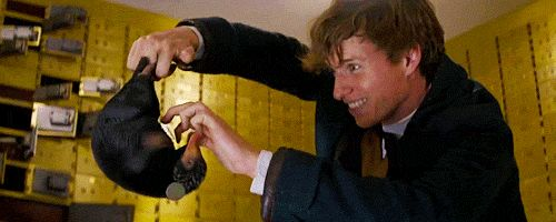 "Newt's interactions with [the niffler] are based on Mr. Redmayne's observations of a zoologist working with a baby anteater. ""It would curl up into a little ball, and in order to make it relax, she..."