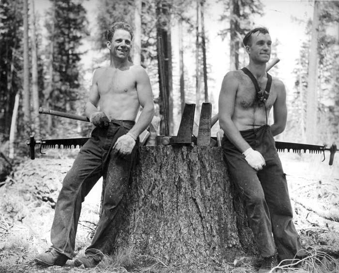 Stihl Print Ad Lumberjacks 3