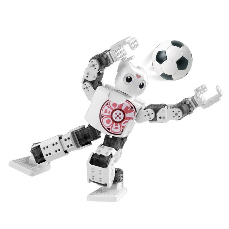 ROBOTIS Mini DIY Robot Kit