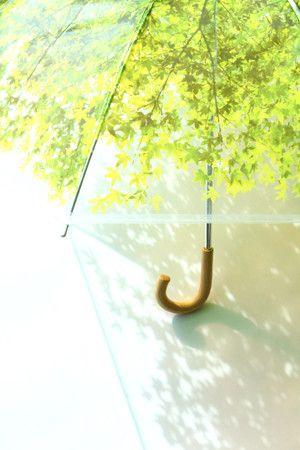 Umbrella that casts a leaf shadow! Just like standing under a real tree.