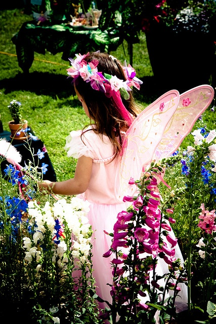1000+ Images About Fairy Festival On Pinterest