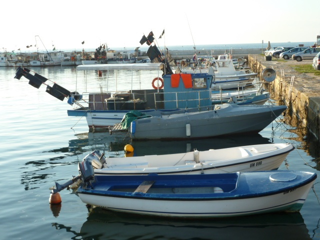 Boats at Savudrija marina