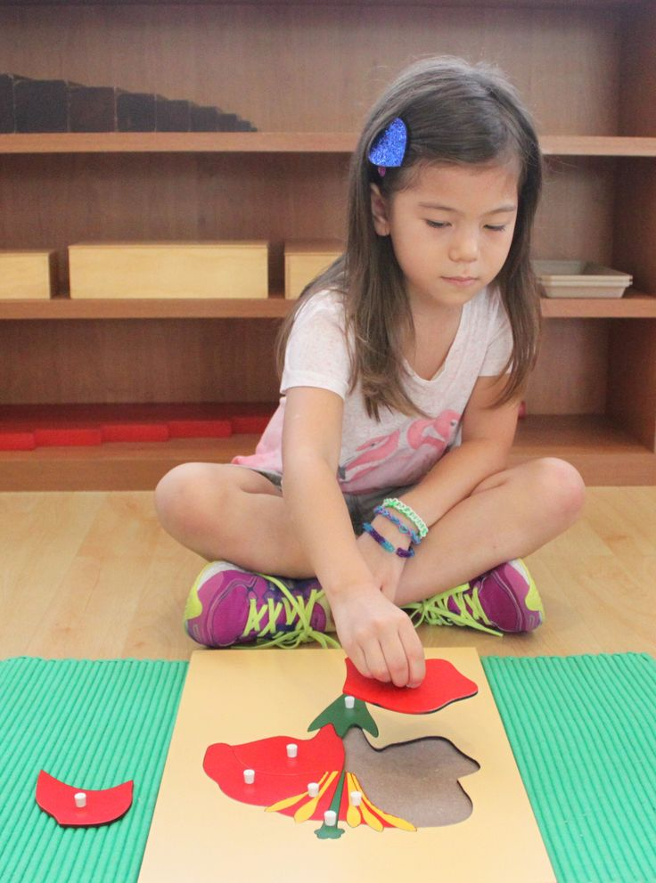 """And if we look at the sensorial apparatus which is able to evoke such deep concentration, there is no doubt that this apparatus may be regarded not only as a help to exploring the environment, but also to the development of the mathematical mind."" - Dr. Maria Montessori."