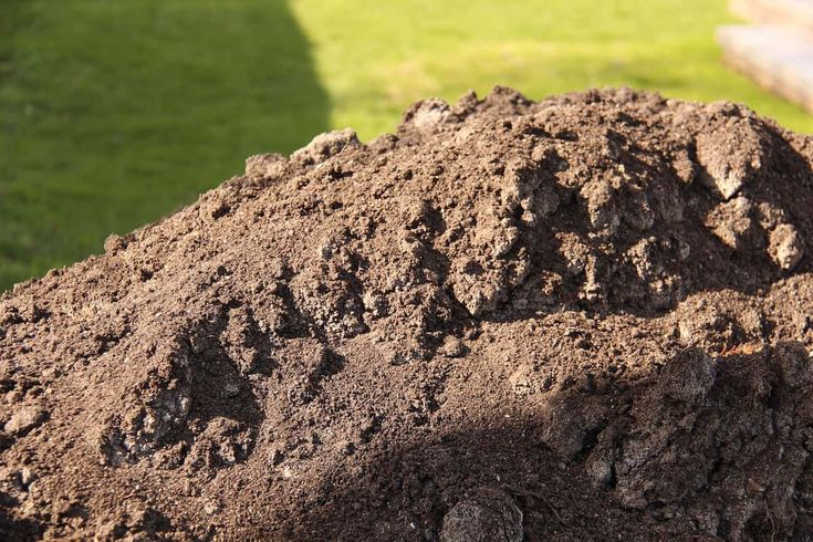 How to grow grass in sandy soil a lawn turf growers