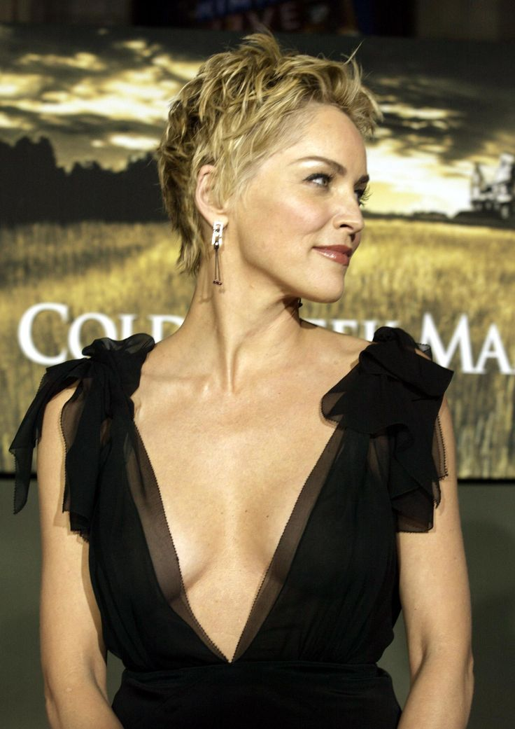 Sharon Stone Rocks Bikini, See Her Many Ageless Looks
