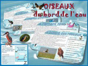 Lecture en autonomie : Oiseaux du bord de l'eau