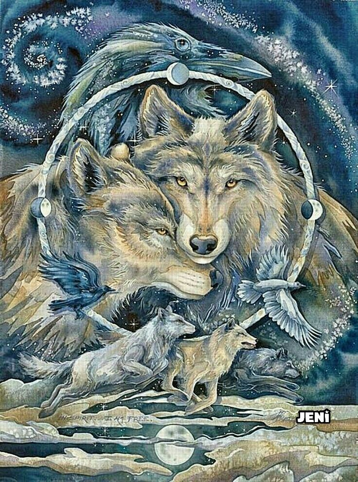 812 Best Images About Wolves On Pinterest Wolves Wolf