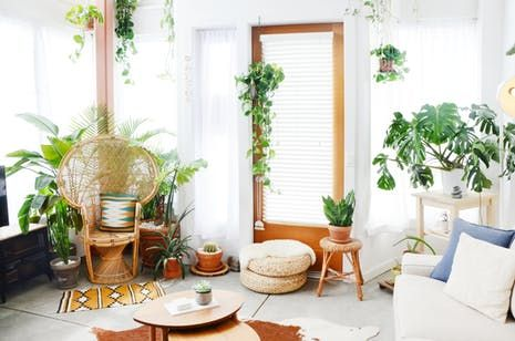 Экскурсия По Дому: Современный Богемный Окленд Апартаменты   Квартира Терапия