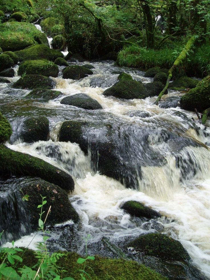 becky falls