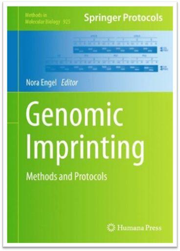 Methods in Molecular Biology Vol.925 - Genomic Imprinting Methods and Protocols | Sách Việt Nam