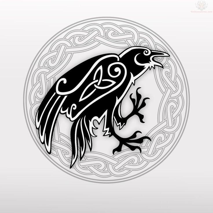 Celtic Crow Tattoo Design Picture