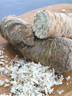 Growing Horseradish - How to Grow Horseradish   Veggie Gardener