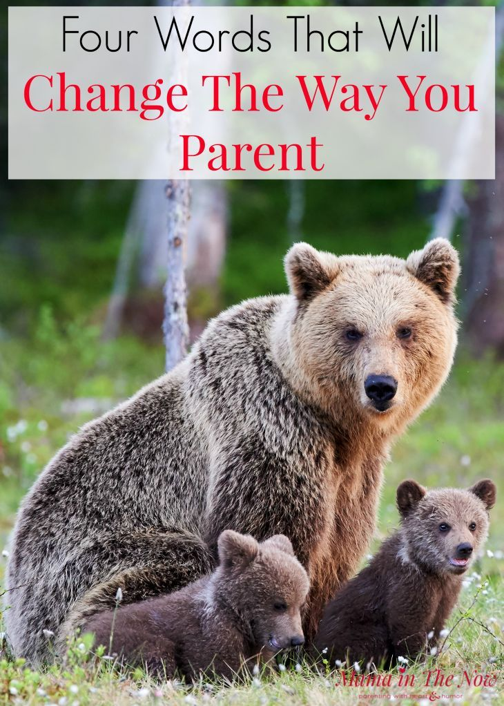 Four words that will change the way you parent - for better. Positive parenting, intuitive parenting encouragement. Special needs mom, medical mom, heart mom encouragement. Parenting with love and intuition. Mindful parenting mantra. #MedicalMom #SpecialNeeds