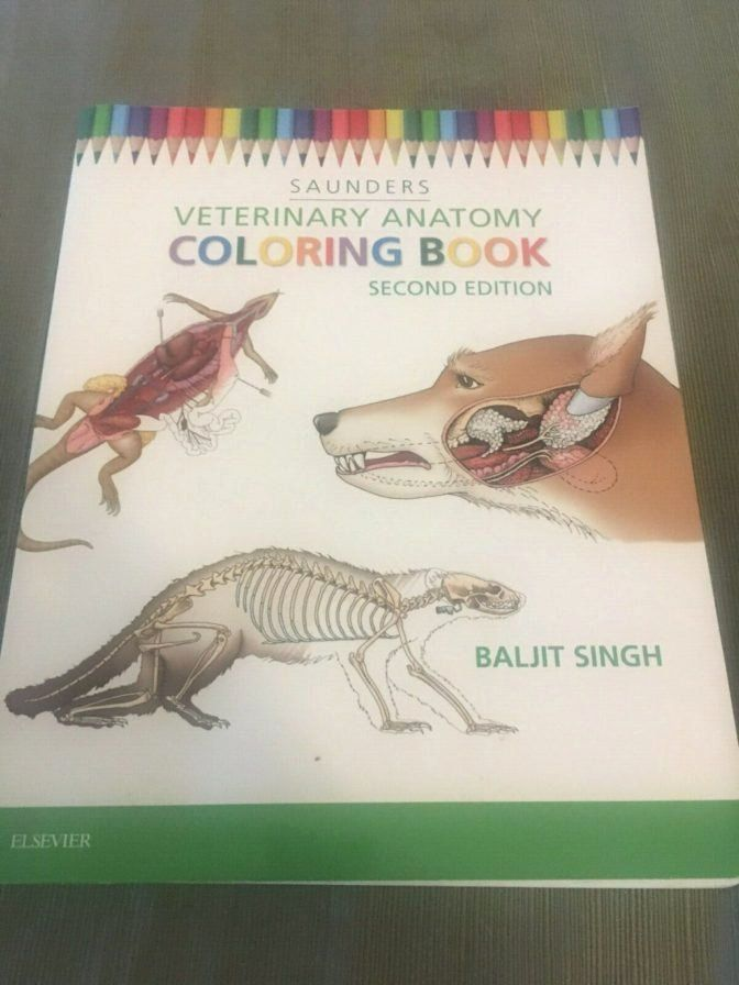 - Animal Anatomy Coloring Book Beautiful Coloring Book 45 Incredible Saunders Veterinary  Anatomy In 2020 Anatomy Coloring Book, Cat Coloring Book, Coloring Books