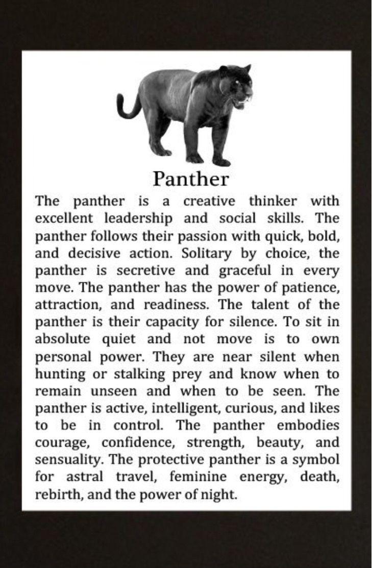 Panther Animal Spirit Guide Black Panther Cat Animal Symbolism