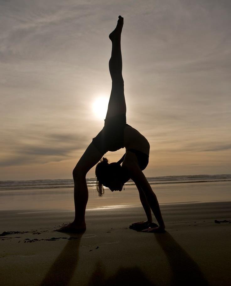 yogi <3