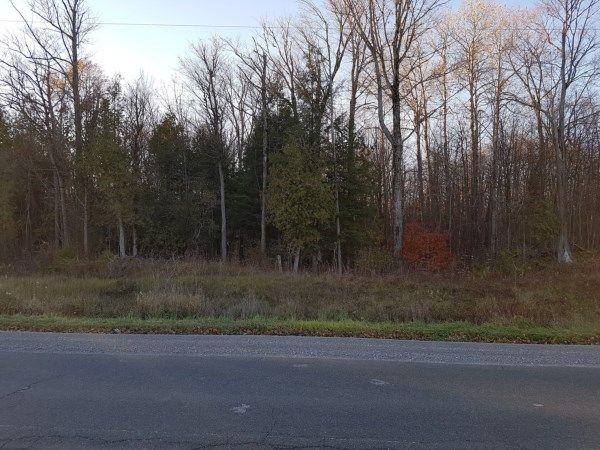 Lot 29 County Rd 48, Kirkfield, ON