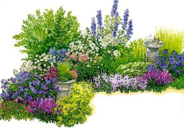 Схема клумбы непрерывного цветения - Лучшая библиотека