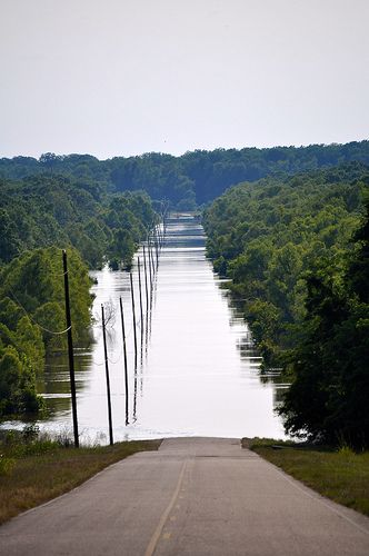 Mississippi River Flooding: there is a lot of displacement of not only people, but this affects agriculture, etc.
