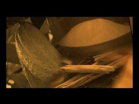 La historia del cacao (en ingles)