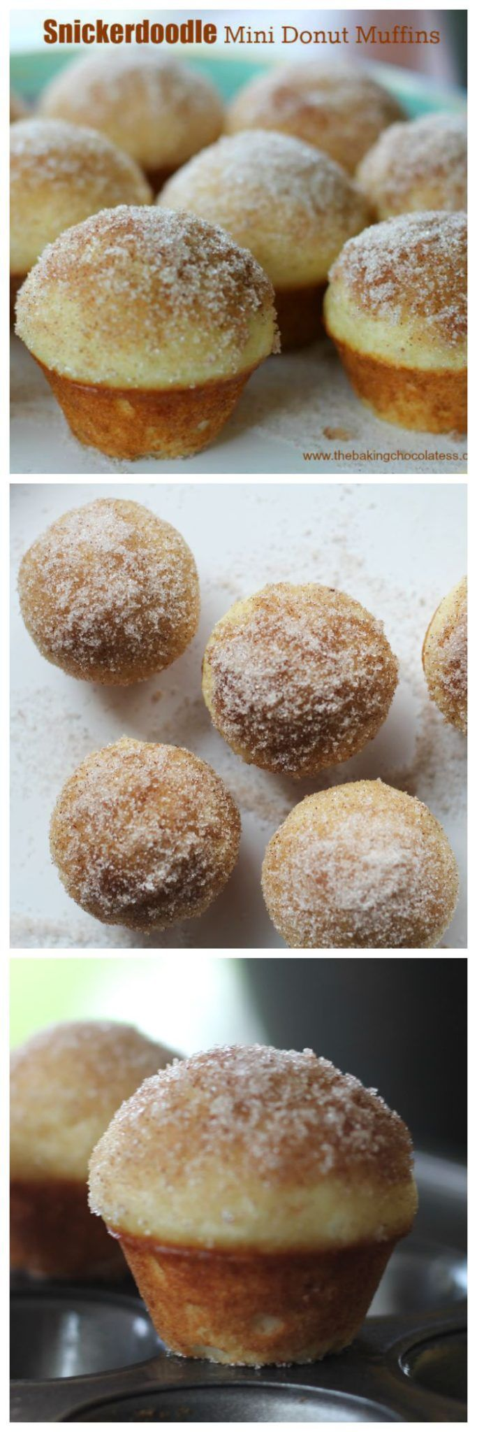 Snickerdoodle Mini Donut Muffins via @https://www.pinterest.com/BaknChocolaTess/