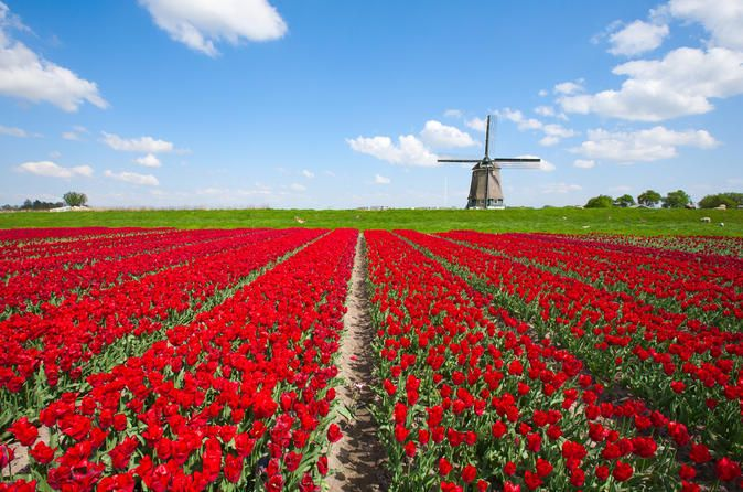Kinderdijk, where the windmills of the Netherlands are, on Saturday afternoons, windmills are in operation